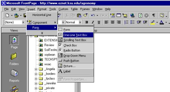 Creating a Form and Access Database Using Microsoft FrontPage on
